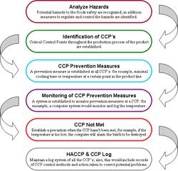manuale haccp gratis