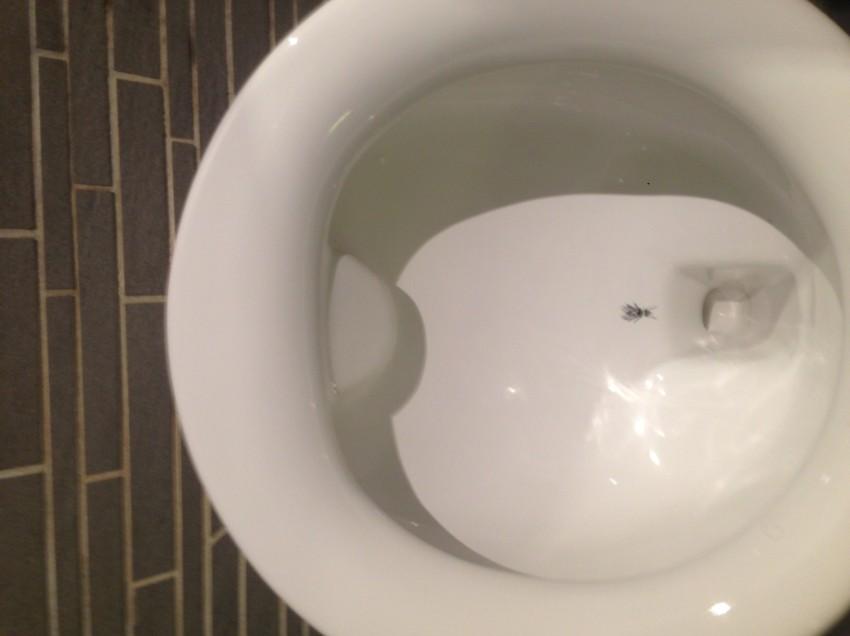 IL WC AL BAR, CON LA MOSCA