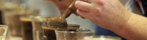 Corso di assaggio professionale del caffè, certificazione SCA Tasting