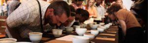 Una sessione di cupping, l'assaggio professionale del caffè