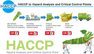 la descrizione del sistema HACCP secondo il sito giapponese wasabi.co.jp