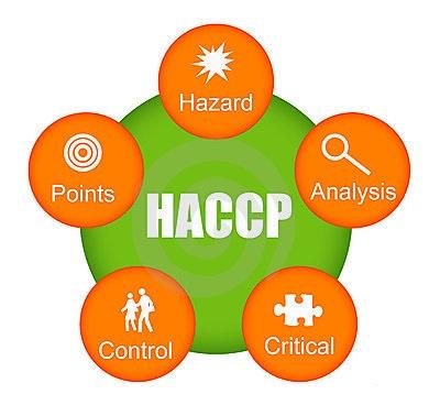 SONO VALIDI I CORSI HACCP E SICUREZZA SUL LAVORO ON LINE?