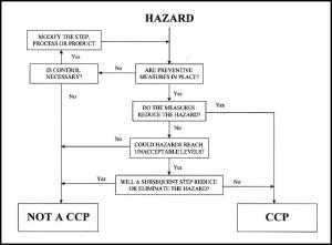 Quanto costa manuale autocontrollo HACCP