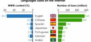 Quali lingue vengono usate su internet?