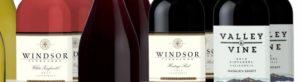 Avere una scelta di vini da paesi meno consueti può incuriosire i nostri clienti.